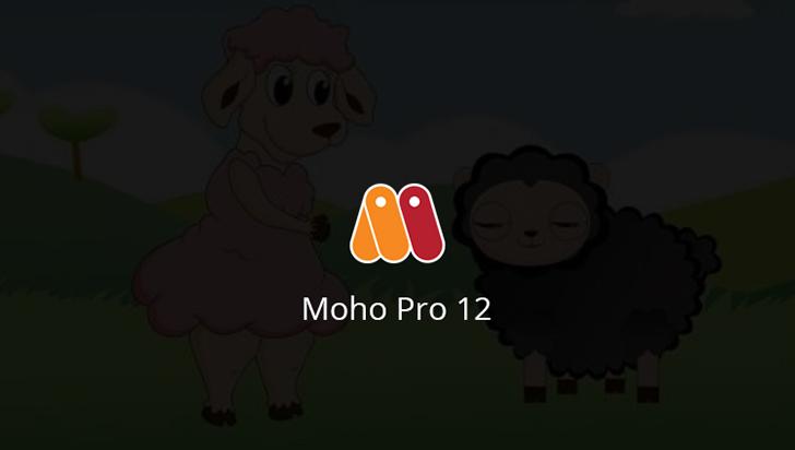 Moho Pro 12